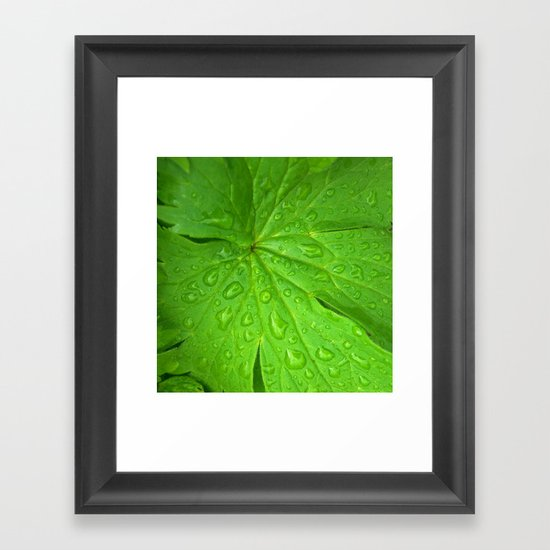 green leaf II Framed Art Print
