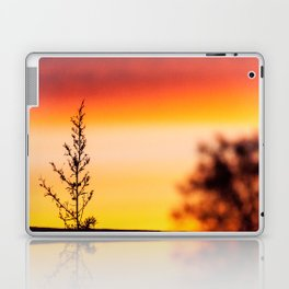 Simple Plant in Camargue Sunrise Laptop & iPad Skin