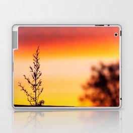 Simple Plant in Camargue Sunrise Laptop & iPad Skin