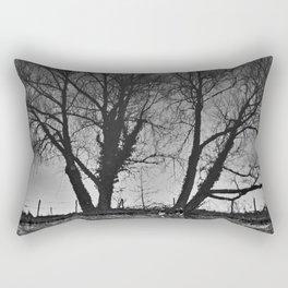 Reflection #7 - Chester canal Rectangular Pillow