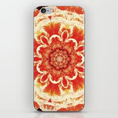 Serie Klai 005 iPhone & iPod Skin