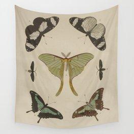 BUTTERFLIES Pieter Cramer Wall Tapestry