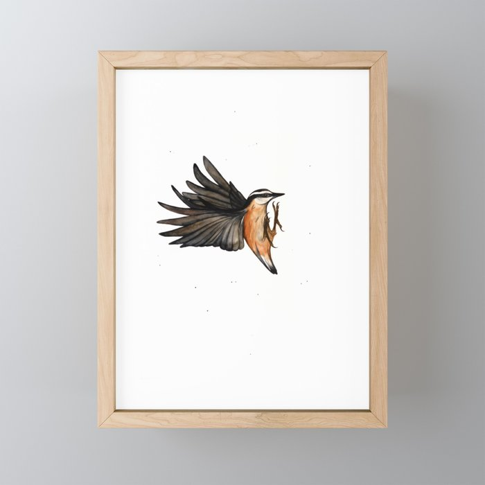 Red Breasted Nuthatch Framed Mini Art Print by Paintedwing - Light Wood - 3