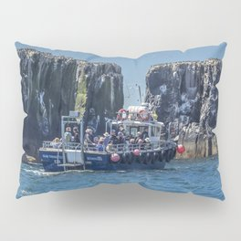 Passengers on board a boat at the farne Islands, Northumberland Pillow Sham