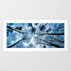 Trees Reaching For The Sky - Painting Style Art Print