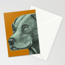 Critter Sketch Stationery Cards