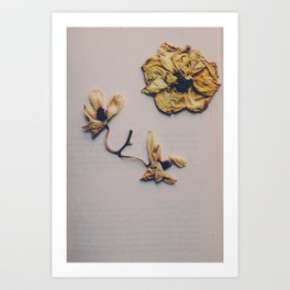 broken flower Art Print