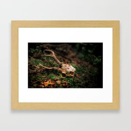 HUNTING SEASON IS OVER. Framed Art Print