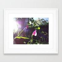 plain Framed Art Prints featuring Plain Flower by Georgia Diment