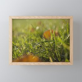 grass Framed Mini Art Print