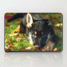 Cute 8 weeks old shepherd puppy iPad Case