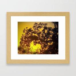 Fall Framed Art Print