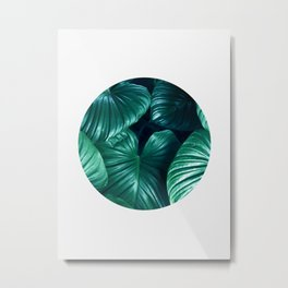 Plant collage XII Metal Print