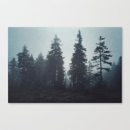 Leave In Silence Canvas Print
