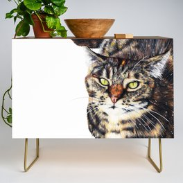 Kitty Cat Chili Credenza