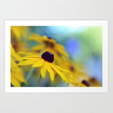 Summer Radiance Art Print