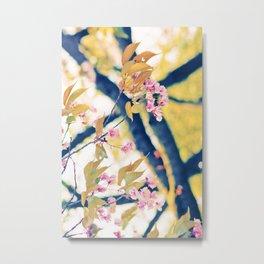 Spring Wispering Metal Print