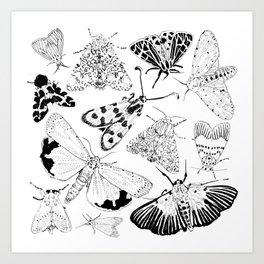 Moth Pattern Black and White Art Print