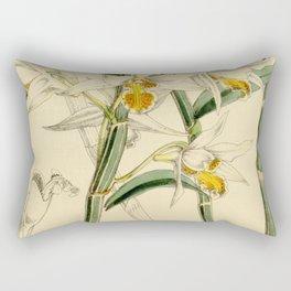 Dendrobium xanthophlebium (as Dendrobium marginatum Bateman ex Hook.f.) Curtis' 90 (Ser. 3 no. 20) Rectangular Pillow