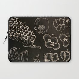 Wasp Architecture Laptop Sleeve