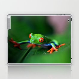Little Tree Frog (Color) Laptop & iPad Skin