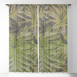 Monstera Deliciosa Tropical leaf Pattern Sheer Curtain
