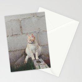 Tou ♥ Stationery Cards