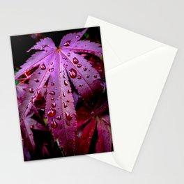 Lingering Rain Stationery Cards
