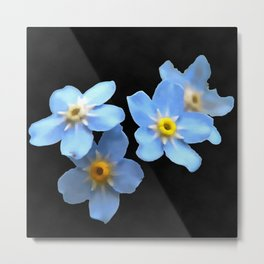 Forget Me Nots Remembrance Flowers On Black Background Metal Print