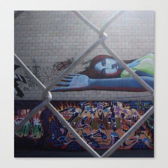 thru the chain-link Canvas Print