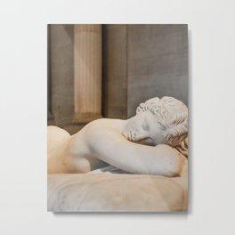 Sleeping Beauty Metal Print