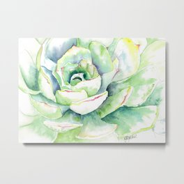Succulent Plant 1 Metal Print