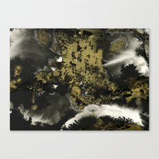Black and Gold II Canvas Print