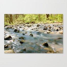 Running River Canvas Print