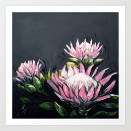 Sugar Bush Proteas Art Print