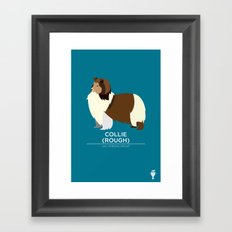 Collie Framed Art Print