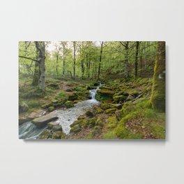 Green Stream Wide Metal Print