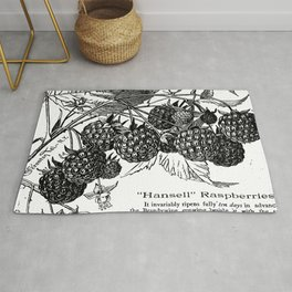 "'Hansell"" Raspberries 1886 Rug"