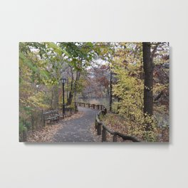 Central Park NYC Metal Print