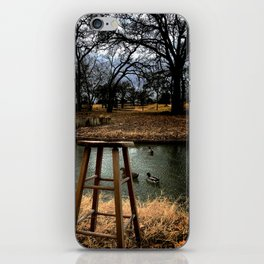 Stool - Color iPhone Skin