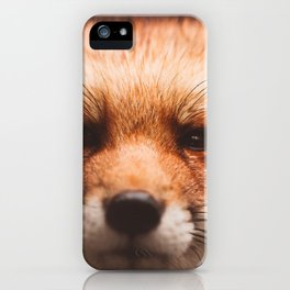 Red fox 2 iPhone Case