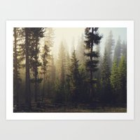 dude Art Prints featuring Sunrise Forest by Kevin Russ