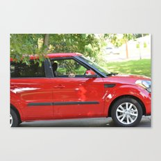 Yorkie Driving Canvas Print