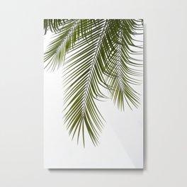 Palm Leaves III Metal Print