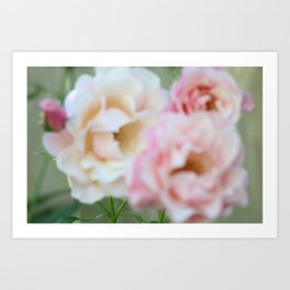 Blurry Roses Art Print