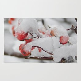 Frosty Berries Rug
