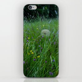 Field of flowers and Dandelions (2) iPhone Skin
