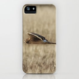 Northern Harrier Hunting, No. 3 iPhone Case