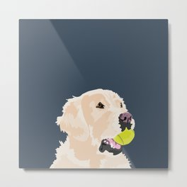 Golden Retriever with tennis ball Metal Print