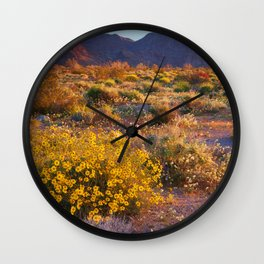 Wildflower Meadow at Joshua Tree National Park Wall Clock
